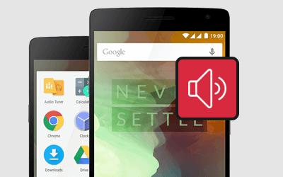 OnePlus 2 Mobile Speaker Repair and Replacement Price